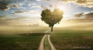 srdce-cesta